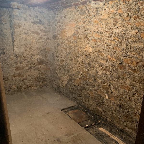 Aménagement d'une cave ancienne sur Paris 16 en OSB3